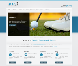 BCGS website case study new